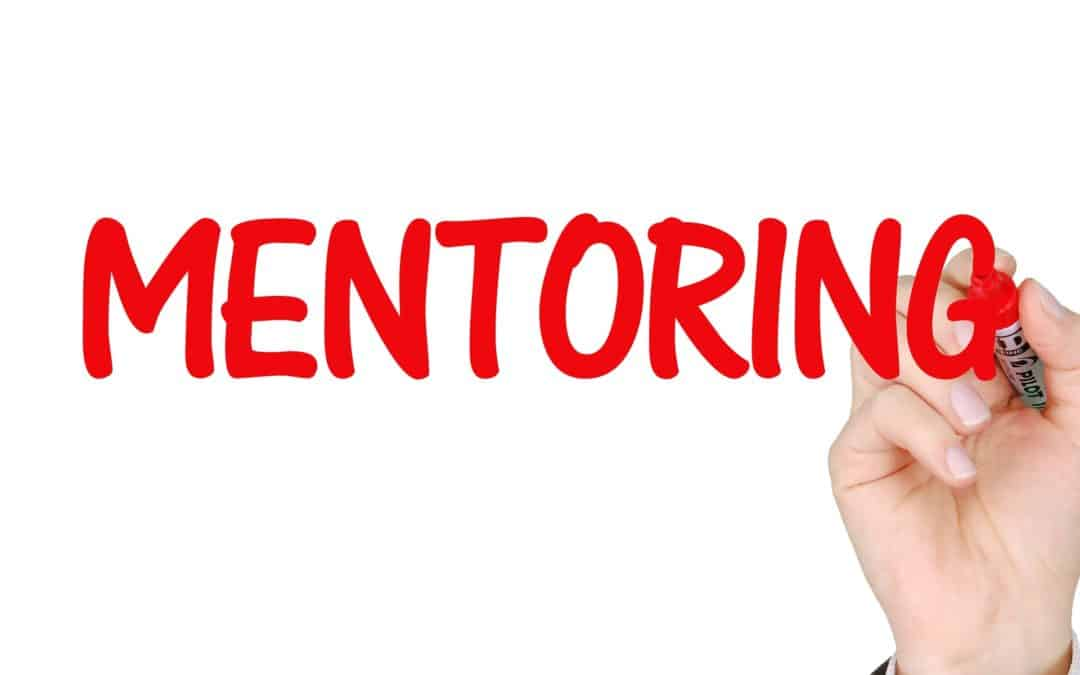 Real Estate Investing Mentor: The Way to Success